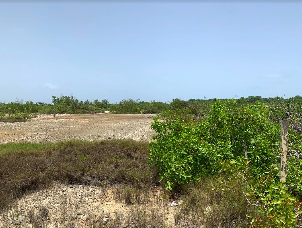 Grand Belizean Estates 7449 – 50% Financing