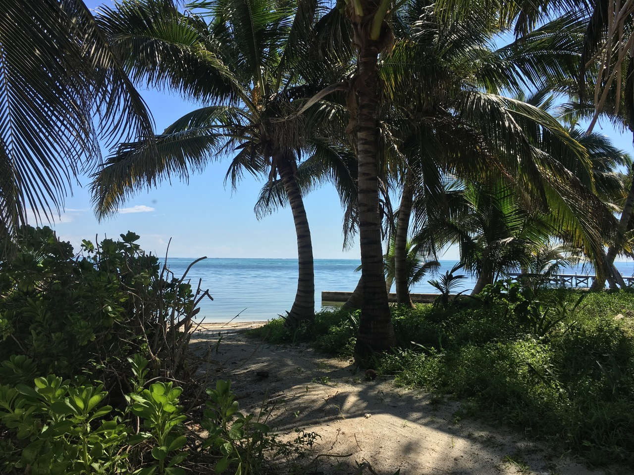 Holiday Lands Beachfront Parcel 245
