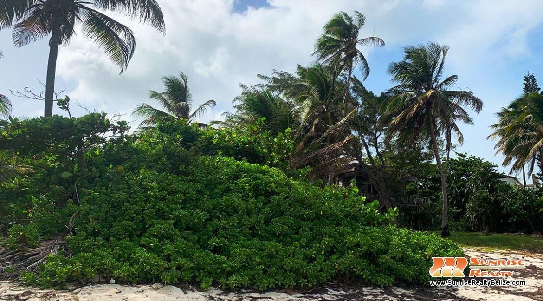 tres-cocos-beachfront-lot-parcel-4270-04
