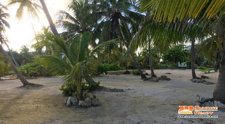 beach lot 4212 (1)