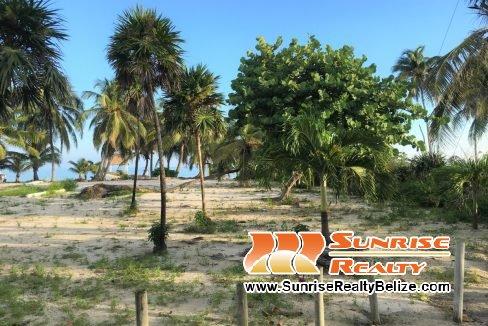 beach lot 4212 (2)